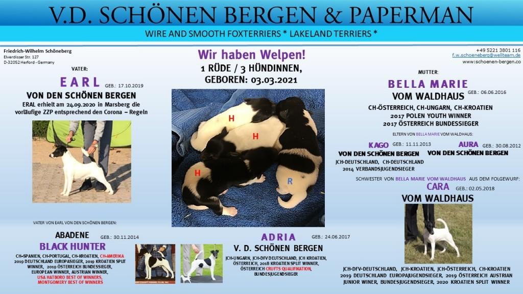Vorlage_Welpen_03.03