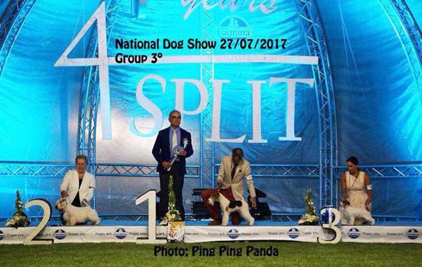 split3